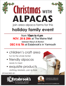 Christmas With Alpacas @ The Maine Mall | South Portland | Maine | United States